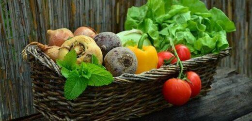 12 raisons pour lesquelles un régime végétarien est une bonne idée
